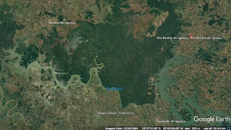 Imagens de satélite mostram a destruição da Mata Atlântica em Rio Bonito do Iguaçu (PR) entre 1984....