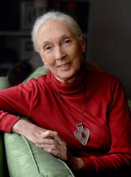 'Hoje existem vários grupos de jovens trabalhando para tornar esse mundo melhor. Eles são meu maior motivo de esperança', afirma Jane Goodall.