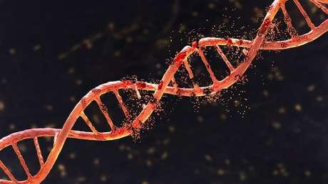 Com apenas pequenos fragmentos de ossos, os cientistas conseguiram sequenciar todo o genoma de um denisovano
