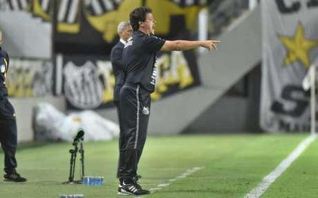 Fernando Diniz ficou satisfeito com o empenho do time na vitória contra o São Paulo (Foto: Divulgação/Santos FC)
