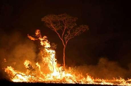 Incêndio em terra indígena no Estado do Amazonas 15/09/2019 REUTERS/Bruno Kelly