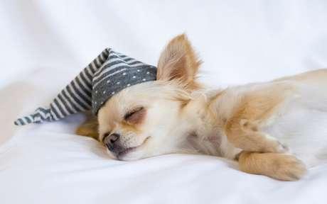 Sono tranquilo: 3 dicas para você ter uma noite em paz