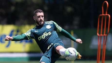 Zé Rafael foi desfalque nos últimos jogos do Verdão devido a uma infecção no pé esquerdo (Foto: Cesar Greco/Palmeiras)