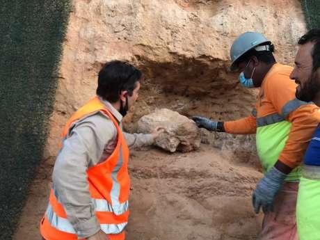 Equipe conclui escavação para retirada de fóssil em Marília, no interior de São Paulo