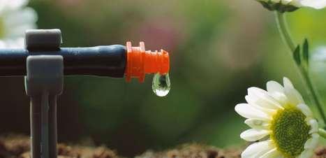 Sistemas de irrigação acessíveis custam a partir de R$ 3 mil