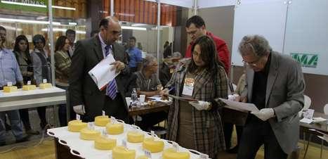 Produtores de queijo minas investem na maturação