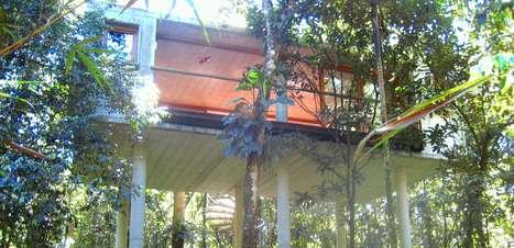 Casa elevada deixa copa das árvores ao alcance das mãos