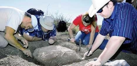 Fóssil de tartaruga de 90 milhões de anos é achado nos EUA