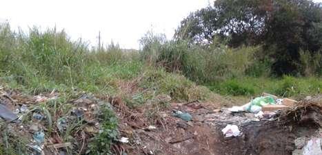 vc repórter: terreno com mato alto pode ser multado em SP