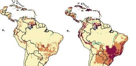 Cumprir Acordo de Paris evitaria dengue na América Latina