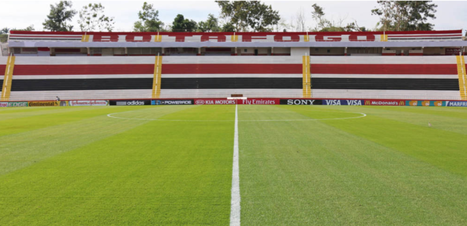 Botafogo-SP lança campanha para combater crise provocada pela covid-19