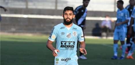 Um motivo por gol: dá para apostar em um ano bom ao Santos?