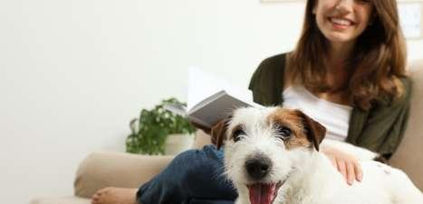 Quer adotar um pet? Prepare suas finanças para dar esse gratificante passo