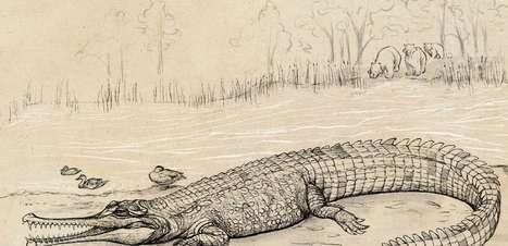 Crocodilo pré-histórico gigante é descoberto na Austrália