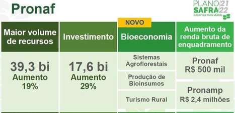 Plano Safra 21/22 aumenta recursos para técnicas sustentáveis