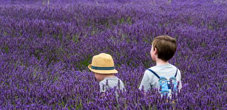 Aromaterapia para acalmar crianças