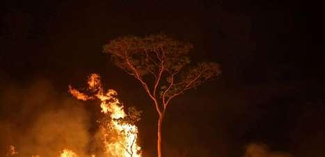 """Desmatamento e tempo seco formam """"barril de pólvora"""""""