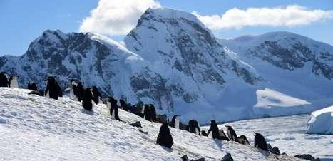 Antártica teve temperatura recorde de 18,3ºC em 6 de fevereiro de 2020