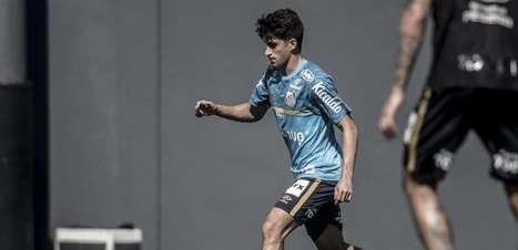 Diniz esboça formação do Santos para encarar o Independiente
