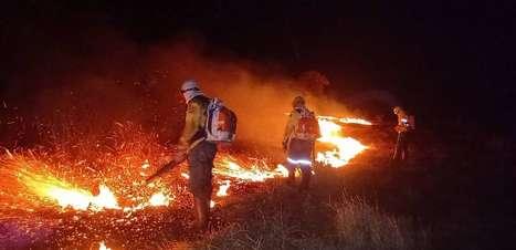 Fogo destrói metade de terra indígena em Mato Grosso do Sul