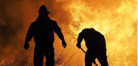 Incêndios florestais matam mais de 33.000 pessoas por ano