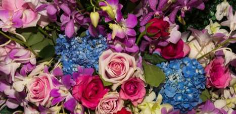 Oráculo das flores: qual mensagem ele trará para você?