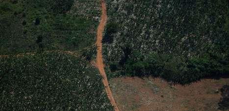 Embaixador da Noruega no Brasil diz que está pronto para conversar sobre Fundo Amazônia