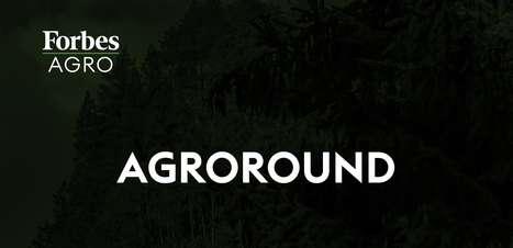 AgroRound: BRF, Marfrig, ABPA, Abitrigo e outras notícias do campo