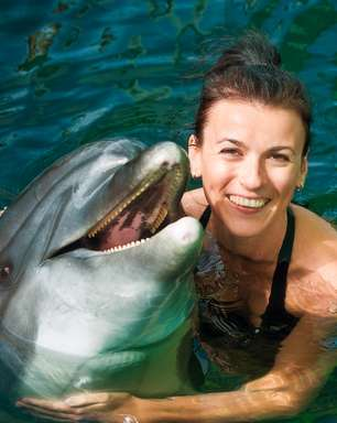 Descubra cinco lugares para nadar com golfinhos no Caribe