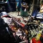 Baleia morre de fome após ingerir 40 quilos de plástico