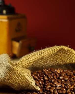 Mesmo na safra baixa, setor cafeeiro tem alta produção