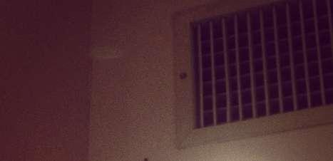 """Australiano encontra aranha em quarto: """"não vou dormir hoje"""""""