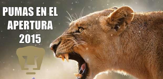 Con memes reconocen el buen torneo de Pumas