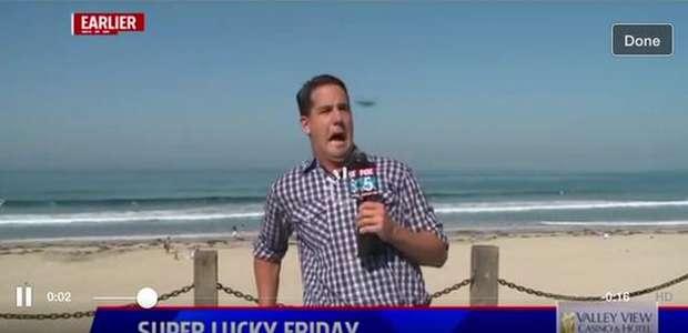 La inimitable reacción de un reportero de Fox por un insecto