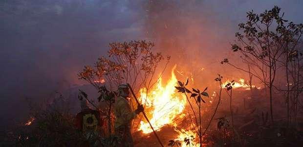 Chapada Diamantina só se recuperará de incêndios em 15 anos