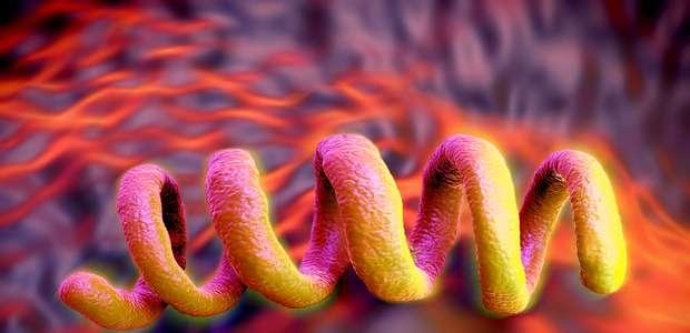 Como se proteger da epidemia de sífilis no Brasil?
