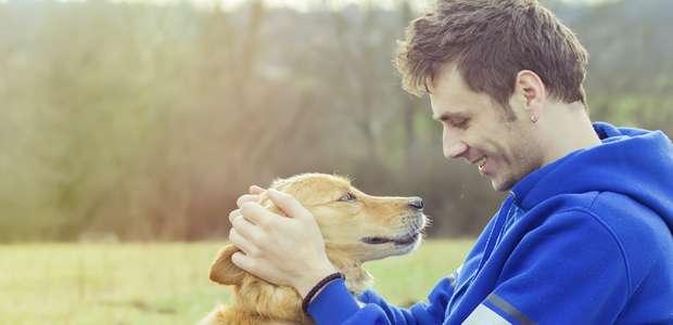Cães: ensinamentos espirituais de força e razão de existir