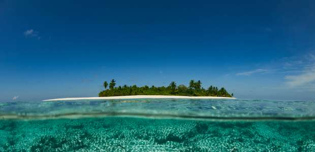 Corona y Parley protegerán 100 islas
