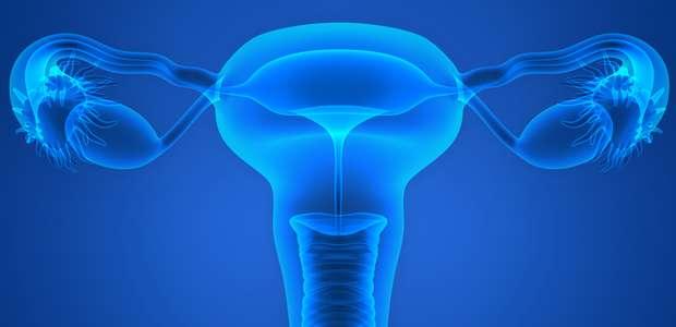 Mulher já nasce com número de óvulos para vida toda; entenda