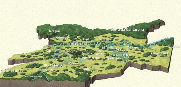 Antes dos portugueses, SP teve floresta tropical, ...