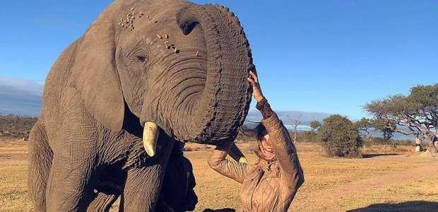 Grazi Massafera faz safári com a filha e posa com elefante
