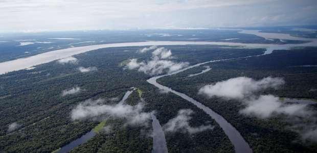 Corrida ilegal pelo ouro destrói a Amazônia, mostra estudo