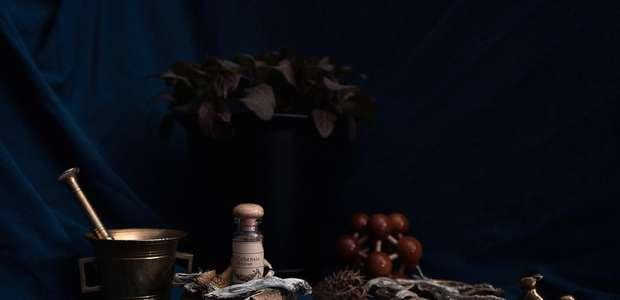 Liberaram cogumelos mágicos no Colorado - é o ...
