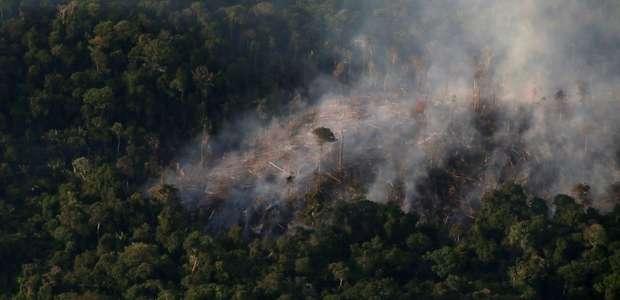 EXCLUSIVO-Estados da Amazônia aceleram combate ao ...