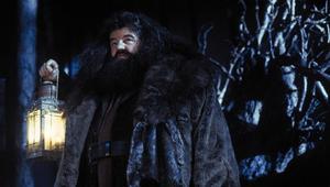 Autora de Harry Potter revela fato comovente de Hagrid