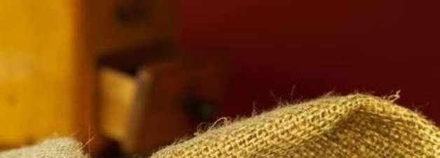 Expocafé apresenta novas cultivares resistentes à ferrugem