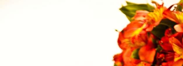 Aprenda receita prática de macarrão instantâneo mexido