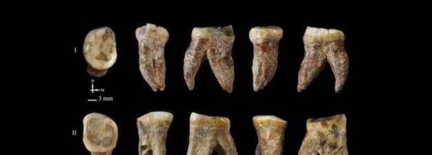 Cientistas estudam fósseis de ancestral humano desconhecido