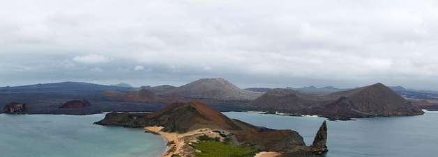 Tartaruga considerada extinta ainda existe em Galápagos