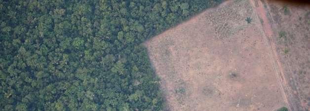 Governadores criam consórcio para defesa do meio ambiente